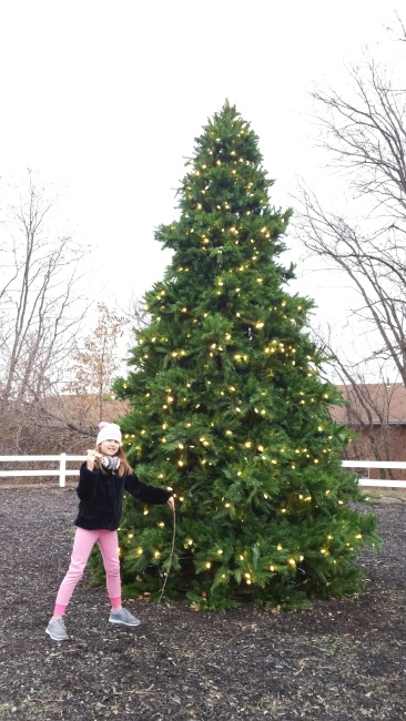 A picture of a desolate park with a Christmas tree and a child