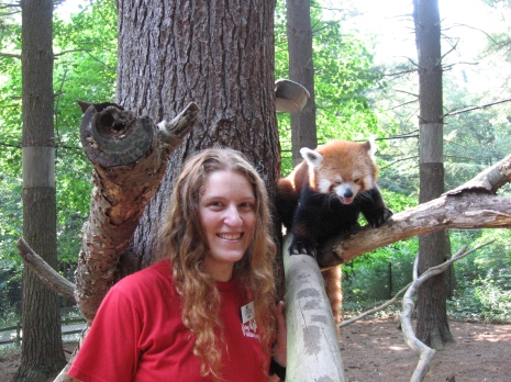 An intern and a red panda at the Oglebay Park Good Zoo.