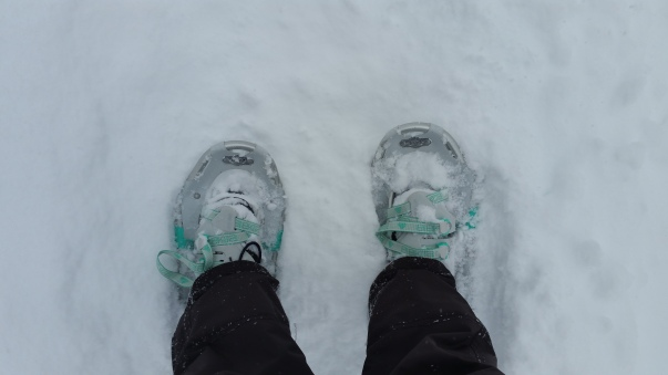 Snowshoes being worn in a snowfall