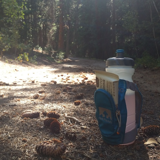 A water bottle on a dirt road covered with pinecones.