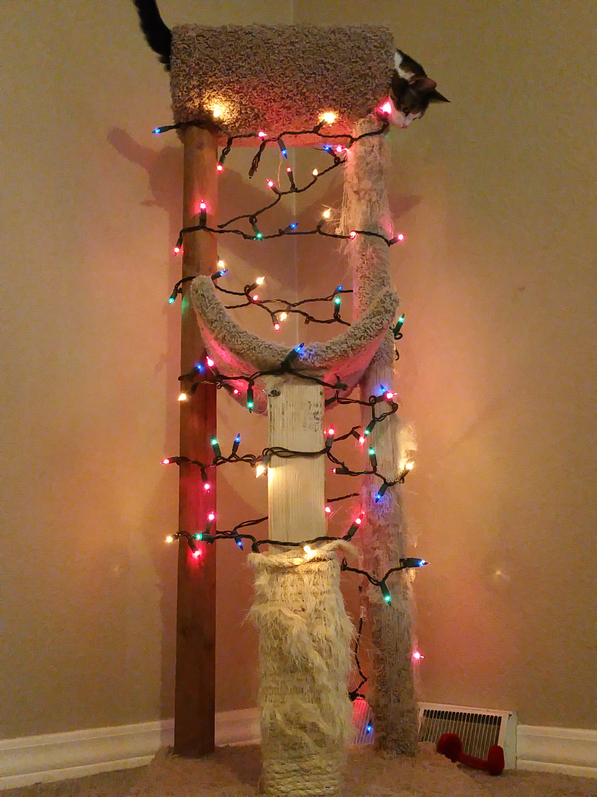 A cat tree wrapped in Christmas lights